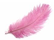 Ostrich Feathers | Ostrich Large Drab Wholesale Feathers (Bulk) - 0.2kg, 43cm - 48cm Medium Pink