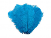 Ostrich Feathers | Ostrich Drab Wholesale Feathers (Bulk) - 0.2kg Turquoise, 23cm - 33cm