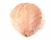 Ostrich Feathers | Large Wing Plumes Wholesale Feathers (Bulk) - Champagne, 0.2kg 46cm - 60cm