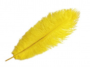 Ostrich Feathers | Ostrich Dyed Drabs Body Feathers - 10 Pieces, 48cm - 60cm