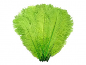 10 Pieces - 48cm - 60cm Lime Green Ostrich Dyed Drabs Body Feathers