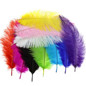 10PCS Multi Colours Fluffy Ostrich Feathers Arts Crafts 25cm - 30cm Long