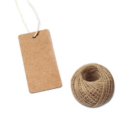 G2PLUS 100 PCS Kraft Paper Gift Tag with 30m Jute Twine String, Rectangle Christmas Gift Tags 8.9cm x 4.3cm