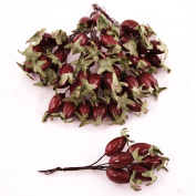 FloristryWarehouse Artificial Rosehip Berry Picks Red, Box of 36