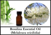 Rosalina (Melaleuca ericifolia) Essential Oil 100% Pure & Natural
