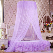 Romantic Princess Universal Ceiling Dome Mosquito Net Ultra Dense Double Lace Mosquito Netting Canopy 10.5 Metre Full Coverage Protection Fit Single/Double/King Size Bed for Holiday Travelling/Home, Purple