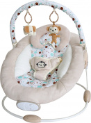 Bebe Style Comfiplus Floating Baby Cradle Bouncer