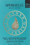 Spongellé Body Contouring Infused Buffer Beach Grass 181 g