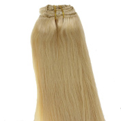 Just Beautiful Hair and Cosmetics Human Hair Clip In Extensions Remy human hair extension strip, Single Pack