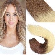 Silky Straight Hair Weave Extensions Brown to Blonde Ombre Remi Virgin Human Hair Dip Dyed Colour Weft 100g/pc