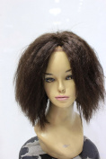 100% Real Human Short Natural Black Fluffy Curly Full Lace Front Wigs for Women
