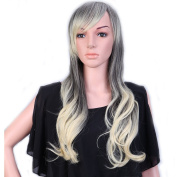 """28"""" / 70cm Heat Resistant Synthetic Wig Japanese Kanekalon Fibre Full Wig with Bangs Long Curly Wavy Full Head for Women Girls Lady Fashion and Beauty Ombre 2 Tone Grey to Blonde"""