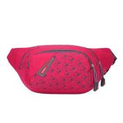 Binmer(TM) Unisex Running Bum Bag Travel Handy Hiking Sport Fanny Pack Waist Bag Belt Zip Pouch