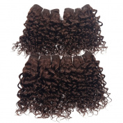Brazilian Virgin Hair Curly Weave Human Hair Extensions 120g 120cm Set 1B #2 #4 Jerry Curly Hair