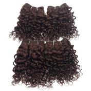 Brazilian Virgin Hair Curly Weave Human Hair Extensions 120g 120cm Set 1B #2 #4 Jerry Curly Hair