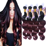 Kapelli Hair (TM) Ombre Hair Extensions Ombre Brazilian Body Wave Virgin Hair 2 Tone T1B/99J Black to Burgundy Human Hair Weave 4 Bundles
