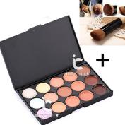 15 Colour Face Contour Concealer Makeup Cream Camouflage Palette Foundation Brush