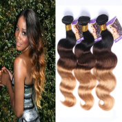 Kapelli Hair (TM) Ombre Hair Brazilian Body Wave Human Virgin Hair Remy Hair Extensions Weave Weft 3 Bundles/lot, 300g Total (100g Each) #T1b/4/27