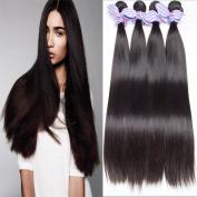 Lemoda Hair 7A Grade Brazilian Virgin Straight Human Hair Black Colour 1b Straight Virgin Hair Weave 3Bundles (100+/-5g)/bundle