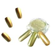 HP95(TM) 1g/ Box Gold Sliver Nail Glitter Powder Shinning Nail Mirror Powder Makeup Art DIY Chrome Pigment