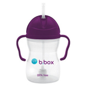 B Box Easy Grip Sippy Cup with Weighted Straw Grape