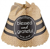 Spin Shades Nightlight BlessedGrateful