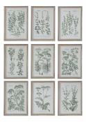 Herb Garden Prints, S/9