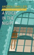 A Voice in the Night [Large Print]