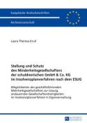 Stellung Und Schutz Des Minderheitsgesellschafters Der Schuldnerischen Gmbh & Co. Kg Im Insolvenzplanverfahren Nach Dem Esug [GER]