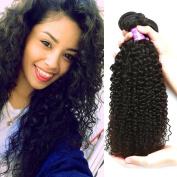 Flady Hair Brazilian Curly Hair Weave 3 Bundles 100% Unprocessed Virgin Brazilian Human Hair Extensions 7A Grade Natural Black Colour