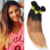 WeLOVE HAIR 8A Virgin Brazilian Straight Hair 4 bundles 10 12 14 36cm Ombre 3 tone 1b 4 27 Double Weft