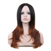 250g 60cm Two Tone Ombre Colour Heat Resistant Synthetic Fibre Wigs Middle Part Natural Straight Replacement Hair Wig As Real Hair Wig for Daily Use