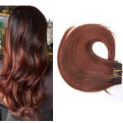 TheFashionWay 100 Grammes - 15 18 20 60cm 8pieces 17 Clips Real Human Hair Extensions Clip in Silky Straight Weft Virgin Hair 21 Colours