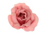Salmon Pink Large Pastel Fabric Carmen Flower Rose Flamenco Dancer Hair Clip Slide by Altissimo Moda