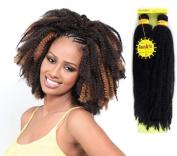 Afro Kinky Braids Rastafri
