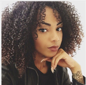 Afro Kinky Curly Brazilian Virgin Hair Lace Front Wigs 100% Human Hair Glueless Wigs with Natural Hairline and Baby Hair for African Americans 20cm Wigs
