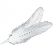AEXGE™ 50 pcs Home Decor Goose Feather Great Party Wedding Decorations
