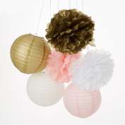 Set of 9 Mixed Gold Pink White Paper Lantern Paper Pompoms Flower Ball Wedding Birthday Party Nursery Hanging Decoration