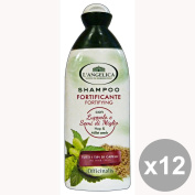 The set of 12 ANGELICA Fortifying Shampoo HOP-MILE 250 Ml. Hair products