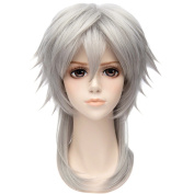 NEW Silver White/Grey Straight Wig Anime Short Party Cosplay Hair Wig Synthetic