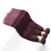 REINE Hair 3pcs/lot Burgundy Straight Hair Bundles Brazilian Virgin Hair Weave Red Wine Colour Human Hair Extensions