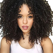 PlatinumHair Fashion Style Black Kinky Curly Wigs Synthetic None Lace Wigs Heavy Density Glueless Synthetic Wigs 46cm - 60cm