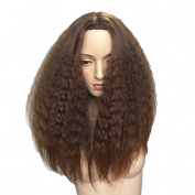 Namecute Ombre Brown Wig Afro Long Curly Heat Resistant Synthetic Wig for Women Middle Parting