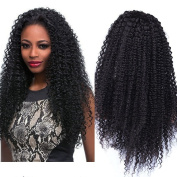 Mic Hair Long Kinky Curly Synthetic Lace Wigs Curly Lace Front Wigs Synthetic Fibre Hair for Balck Women