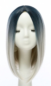 Wehous 38cm Short Straight Hair Wig Natural Hair Extension Cosplay Wigs Neat Bob Black to Grey