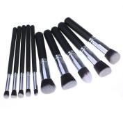 Sankuwen 10pcs Professional Eyeshadow Face Makeup Brush Set