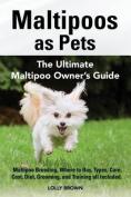 Maltipoos as Pets