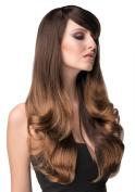 Long, ombre wig - dark brown, blending to blonde