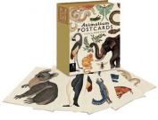 Animalium Postcard Set