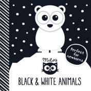Milo's Black and White Animals [Board book]